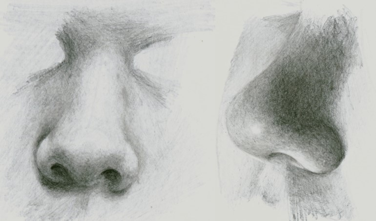8 Realistic Noses Pencil Drawing Made Easy